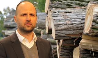 Teures Holz: So will das Land gegensteuern