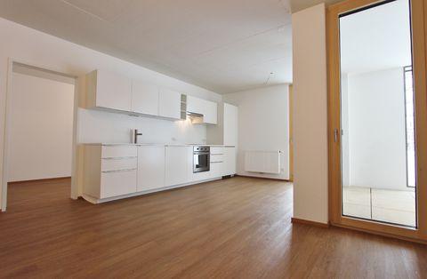 Lauterach: schöne 3-Zimmer-Terrassenwohnung in Vorzugslage