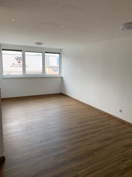 Leeres Zimmer mit Hartholzboden, Natürliches Licht