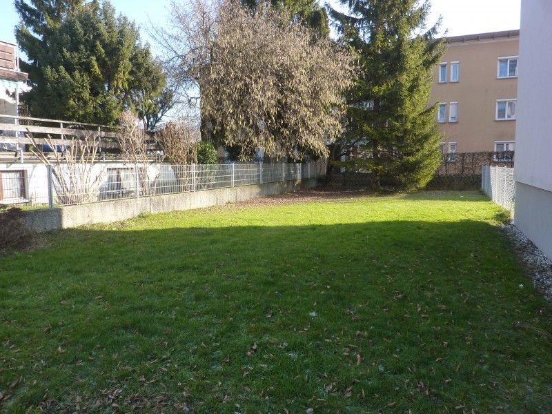 Hinterhof mit Rasen