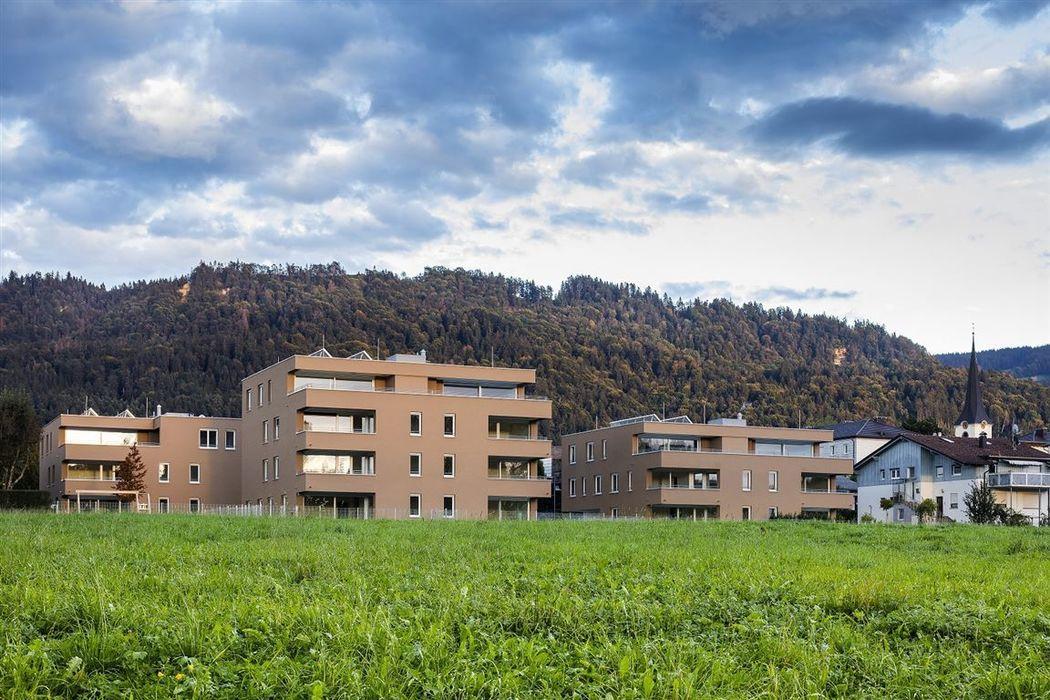 Außengebäude mit Bergblick, Rasen